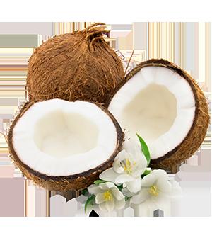 coconut_portrait